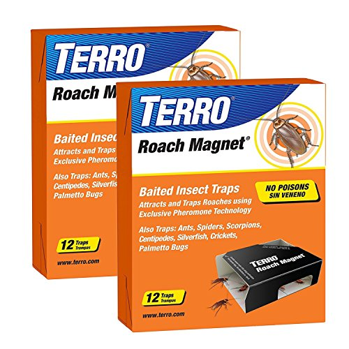 victor insect traps Victor M256 Poison-Free Insect Magnet Traps, 12-Pack (2 packages= 24 total)