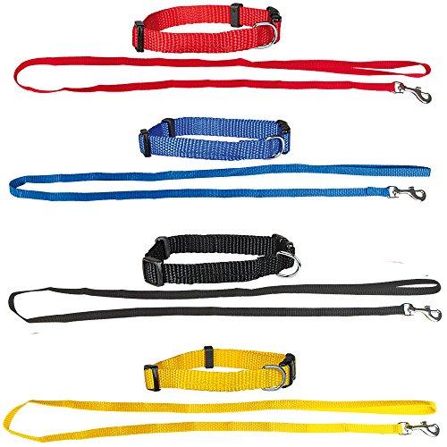 Schecker Set aus: 4 Welpenhalsbänder + 4 Welpenleinen im Set 4 Farben ideal für Züchter oder Sparpaket Welpenhalsband mit Leine als Set