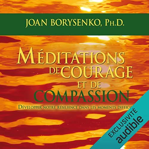 Méditations de courage et de compassion cover art