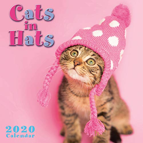 2020 Mini Wall Calendar: Cats in Hats