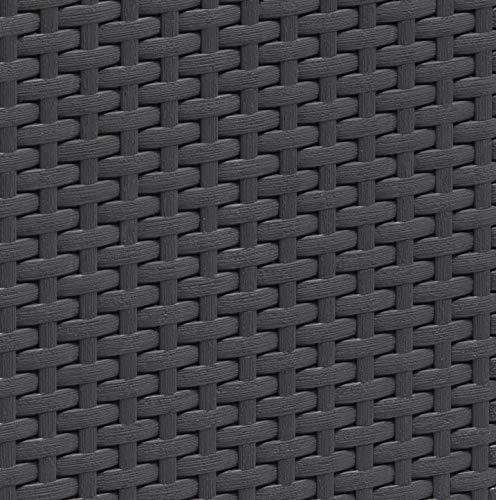 Allibert Beistelltisch/Kühlbox Ice Cube 40 Liter, graphit - 4
