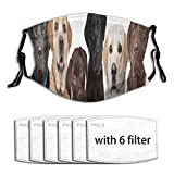 Six Labrador Puppy Pedigree Dogs Row Animals Wildlife Brown Group White Lab Chocolate Washable Reusable Face Bandanas Balaclava Mask with Adjustable Elastic Strap with 6 Filter