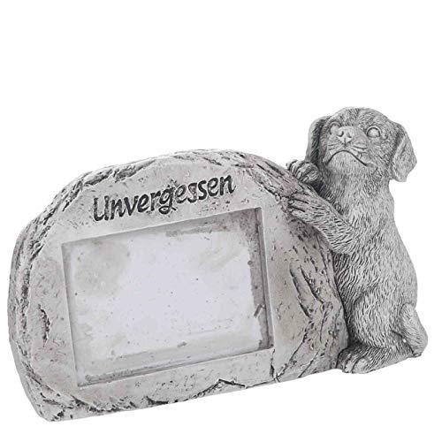Trauer-Shop Bilderrahmen für verstorbenen Hund, Unvergessen. Breite 16,5 cm. 1 Stück