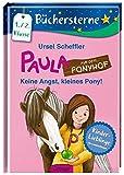 Paula auf dem Ponyhof: Keine Angst, kleines Pony! (Büchersterne)
