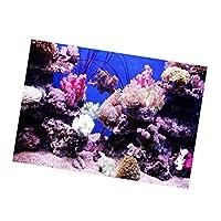 魚 タンク 背景 ポスター 接着 装飾 グリーン 貼り付け簡単 3D効果 防水 PVC 全3タイプ - B, 61x41cm