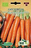 Germisem Biologico Amsterdam Semi di Carota 4 g
