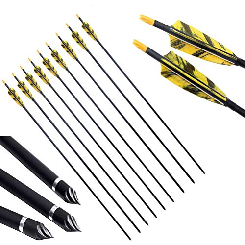 PG1ARCHERY 30 Inch Carbon Arrows with 4 Inch Shield Turkey Feathers Fletching &...