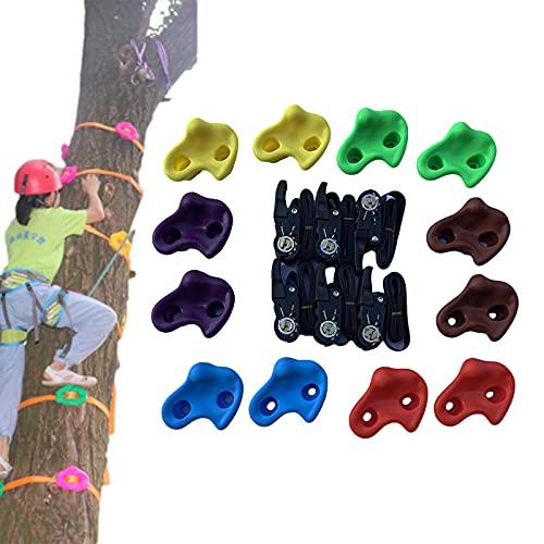CCCYT Baumklettergriffe Kinderklettersteine Baum Klettergriffe Set Mit 6 Ratschengurte Ideal Zum Klettern Auf Rahmen Kletterhilfen Für Kinder(12pcs)