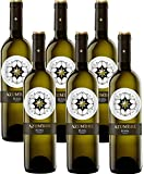 Vino Blanco Azumbre Verdejo D.O Rueda - 6 botellas de 750 ml - Total: 4500 mls