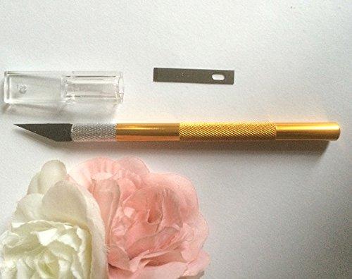 Skalpell Präzisionsmesser Ersatzklinge Modelliermesser Fondant Alu Griff Profi Ausstecher Modellierwerkzeug Tortendeko SC217