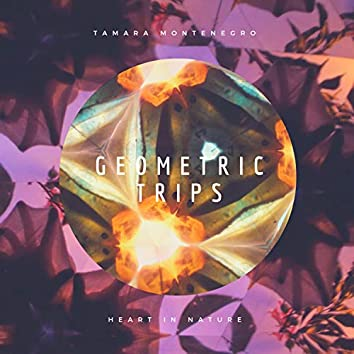 Geometric Trips
