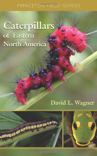 Caterpillars of Eastern North America: A Guide to Identification and Natural History (Princeton Field Guides (62))