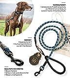 Jack & Russell Correa para Perro Premium Tajo de Cuerda para Escalar mosquetón de Perno - Correa para Perro con Lazo de Mano de Agarre Suave Incl. Bolsa de Yute (Azul Marino)