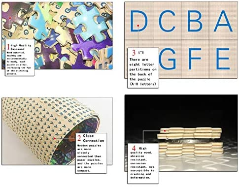 Chinese wooden puzzle _image1