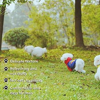 Toulifly Chaussette pour Chien,Chaussettes Anti Dérapantes Chien,Chaussette de Protection Chien,Dog Socks,Dog Shoes,Dog Boots,Contrôle de Traction pour Petits Chiens,Imperméable(M,Noir)