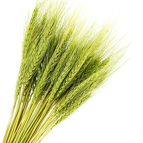 Majome Simulación de Plantas Flores secas Ramos Decoración de Arte para el hogar Sala de Estar DIY Cocina Decoración de Mesa