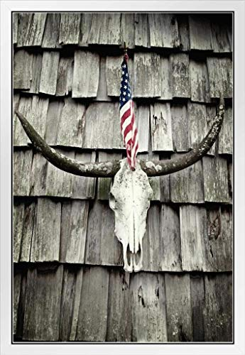 Bnuok Horns and American Flag Patriotic Photo Photograph White Wood Framed Poster 14x20