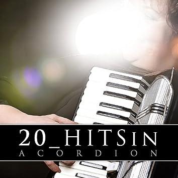 20 Hits in Acordion