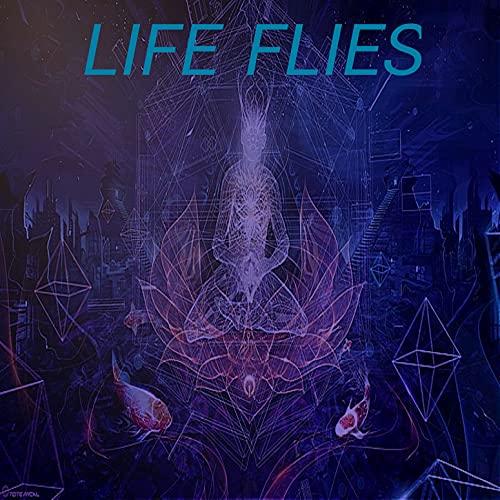 Life Flies [Explicit]