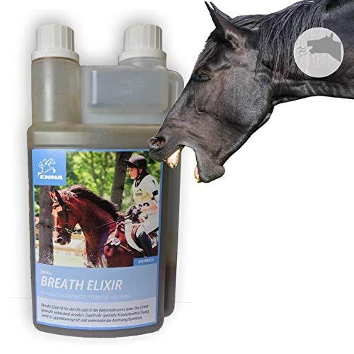 Hustensaft Pferd I Bronchial Kräuter Thymian I Elixir I Bronchialkur bei Husten I unterstützt bei Allergie I Beruhigung Atemwege I Bronchen Schleimlöser I Kräutermischung T schleimlösend 1L