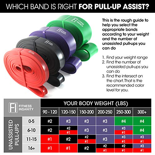Pull Up Assist Bands – Set of 4 – Heavy Duty Resistance Bands – Mobility and Powerlifting Exercise Bands – Perfect for Body Stretching, Powerlifting and Resistance Training