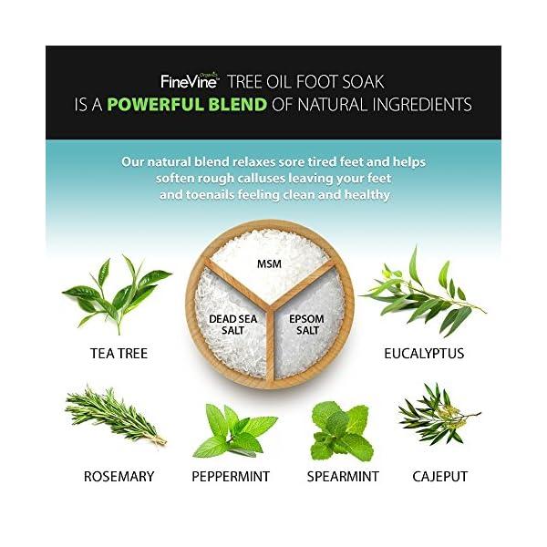Beauty Shopping Tea Tree Oil Foot Soak with Epsom Salt – Made in USA – for Toenail Fungus,