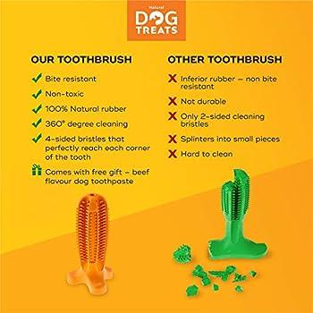 Natural Dog Treats Brosse à Dents et Dentifrice Kit pour Chien, Soin Oral Nettoyage des Dents, 100% Naturel Jouet à Mâcher, Taille Grand