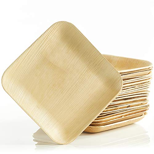 Dananda® Einweggeschirr aus Palmblatt, plastikfrei verpackte Einwegteller (25 STK.) inkl. praktischer Baumwolltasche, kompostierbar, nachhaltig
