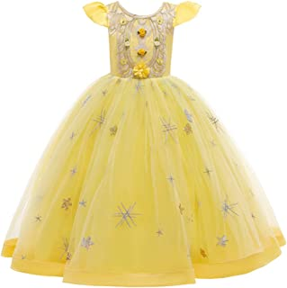 Kids Girl Host Show Princess Long Lace Dress Flower Piano Performance Imperial Noble Court Style With Embroidery Stars