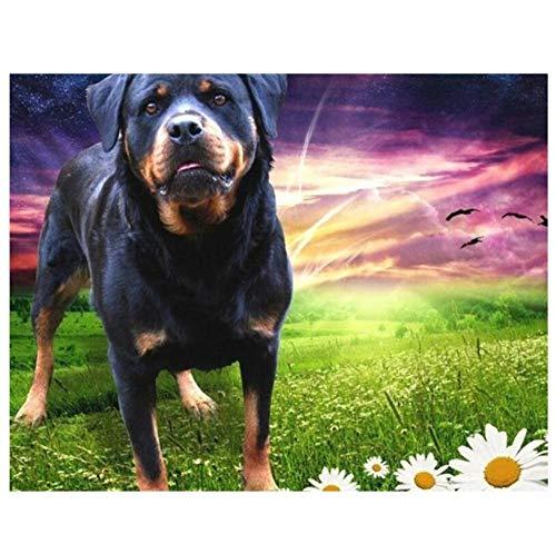 5D Bricolaje Pintura De Diamante Digital Perros Animales Hierba Flores Mosaico Taladro Redondo Completo Punto De Cruz Arte Sala De Estar Decoración Del Hogar Regalos 40×50cm