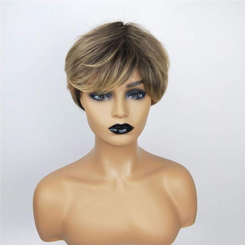 試験フルーツうっかりSummerys 女性のための茶色のかつら短い巻き毛のかつら合成完全女性のかつら