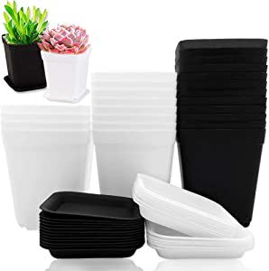 24 PCS 3 Inch Square Nursery Flower Pots,Square Plastic Plant Pot,Seedling Nursery Pots with Saucer for Room,Garden Office and Balcony Decor(White+Black)