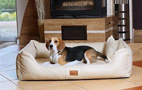 tierlando Maddox Ortho Visco letto ortopedico cane da tierlando in Finta Pelle Divano per Cani Cesta per cani TGL GRANDE 120 cm crema