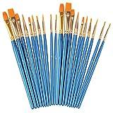 Best Brushes - Soucolor Acrylic Paint Brushes Set, 20Pcs Artist Paintbrushes Review
