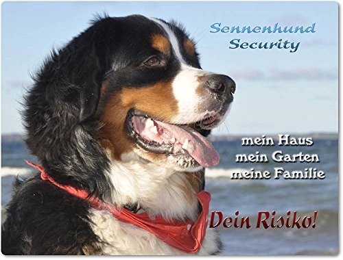 Merchandise for Fans Warnschild - Schild aus Aluminium 15x20cm - Motiv: Berner Sennenhund Security (01)