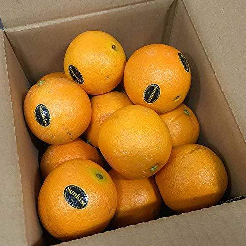 完熟 オレンジ 約2kg(8〜14玉) ネーブル バレンシア 果物 フルーツ 「北海道・沖縄は 1100円」