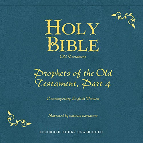 Holy Bible, Volume 17 audiobook cover art