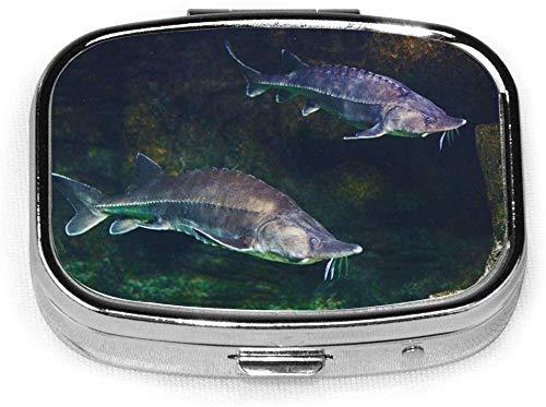 2er-Set, quadratische Pillenhülle mit 2 Fächern, tragbare Reise-Pillen-Schachtel Fischgrüner Atlantik Lebendiger Stör im Aquarium Weißer Beluga