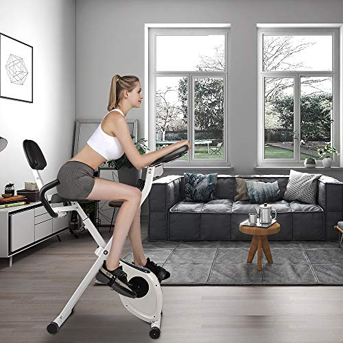 bigzzia Exercise Bike