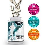 Premium Aminosäuren-Komplex mit 6 Mineralien & Vitamin D3 & K2 + B12 - Elektrolyte für Läufer -...