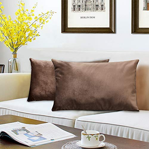 BALCONY & FALCON Pack of 2 Velvet Pillow Cases Decorative Square Cushion Covers with Invisible Hinges for Sofa Bedroom Home Car 45x45cm/50x30cm 50x30cm brown