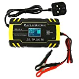 Dandelionsky Car Battery Charger and Maintainer, 12V 24V 3-Stage Intelligent Automatic Battery...