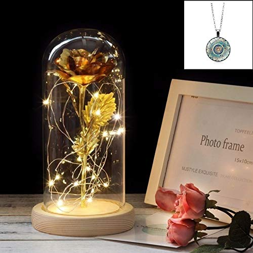24K Red Rose in Glass Dome Beauty and The Beast Rose with 20LED 2M String Light 3PCS AAA Batteries Included for Christmas Thanksgiving Wedding Anniversary Mother s Day Valentine s Day-Multi Color