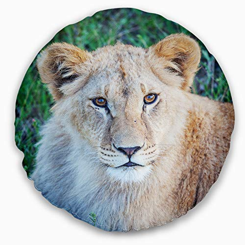 Designart Large Lion Relaxing in Forest' African Wall Throw Round Living Room, Sofa, High Quality pillow insert + Cushion Cover Printed On Both Side 20'