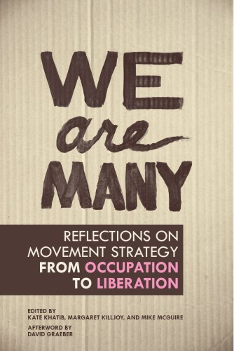 Image of We Are Many: Reflections on Movement Strategy from Occupation to Liberation