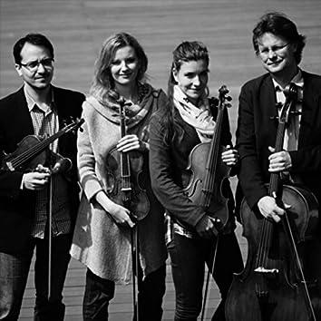 Václav Jindřich Veit: String Quartet No. 4, Op. 16: IV. Allegro assai (Live)