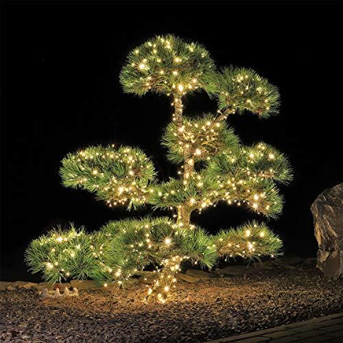 CLGarden LED Lichterkette außen 400 warmweiss für Weihnachtsbaum