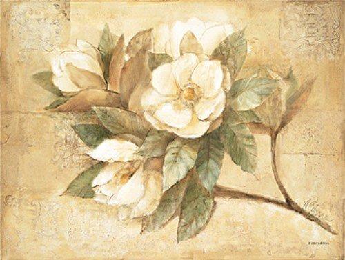 Pimpernel Sugar Magnolia Platzsets 4er Set