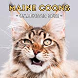 Maine Coons: 2021 Wall Calendar, Cute Gift Idea For Maine Coon Cats Lovers Or Owners Men And Women