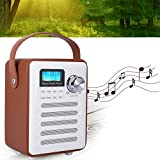 Lautsprecher Tragbares Internet Holz Independent Sound Chambe DAB/DAB +...